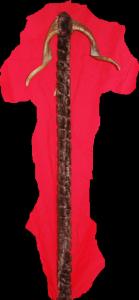 Bâton de marche Ref AAA082