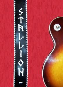 Sangle guitare Ref ACM008