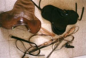 Sellerie cheval Ref ACA050